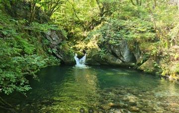 cascada en el area receativa de la pesanca en Asturias